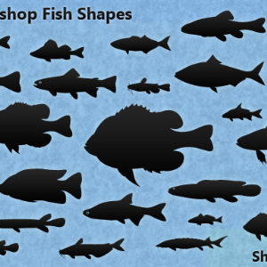 30 Photoshop Fish Shapes Natural Fish