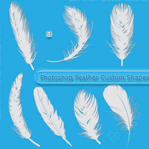 Feather Shapes