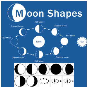Moon Shape Vectors